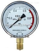 充油压力表YN-40/50/YN60/YN75/YN100/YN150