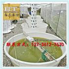 2000升敞口圆桶,塑胶鱼池型号