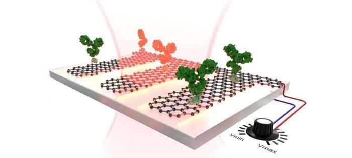石墨烯是单层碳原子结构,因而重量较轻且极其坚固.